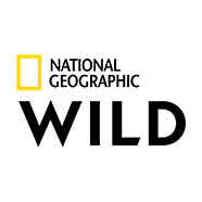 National Geographic Channel Wild logo